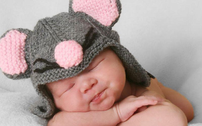 Quiz: le prénom de bébé se niche-t-il dans le règne animal ?